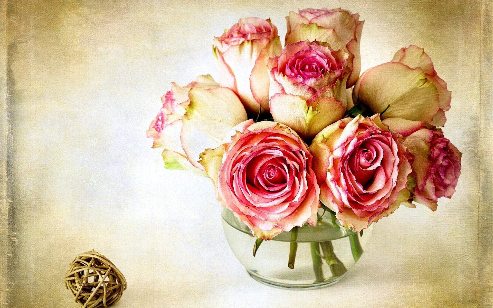 roses Save 70% on bulk roses online buy bulk red roses, pink roses, white roses and wholesale roses at bunchesdirect.